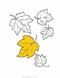 Раскраска осенние листья А4 pdf